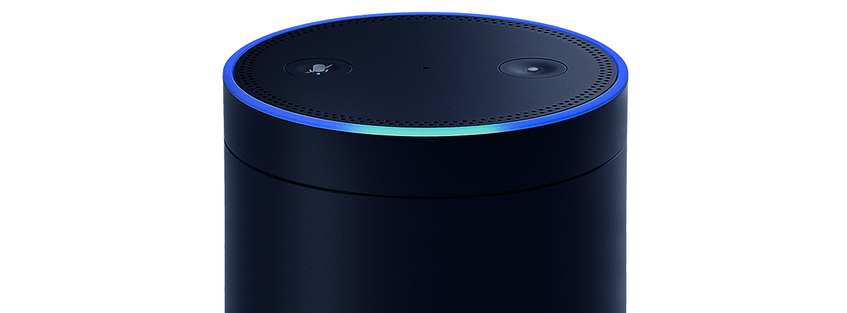 智能开关 Alexa