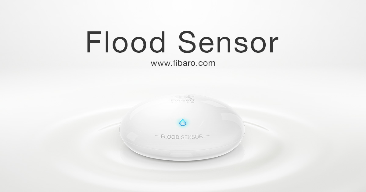 Water Leak Detector Flood Sensor Fibaro