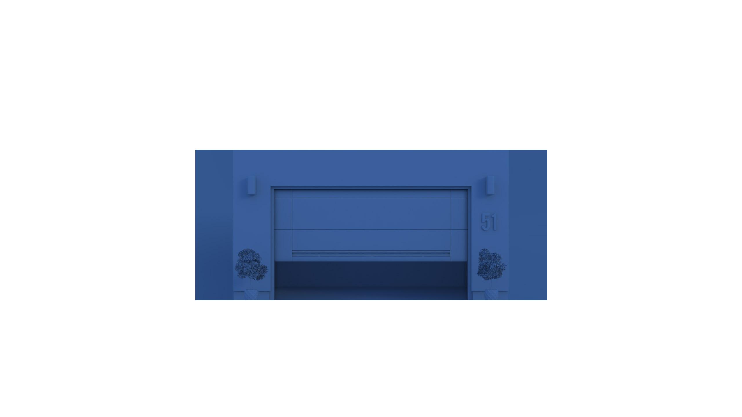smart door